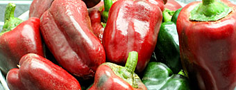 HydroRush Deep Water Culture Red Bell Peppers more weight